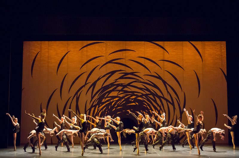 Scottish Ballet in Crystal Pite's Emergence. Photo: Andy Ross