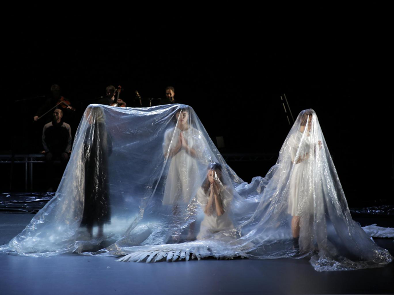 Michael Keegan Dolan's Swan Lake. Photo: Colm Hogan